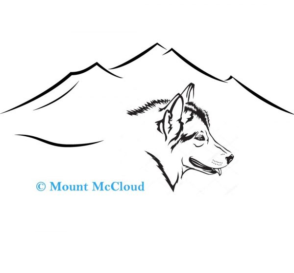 Mount McCloud